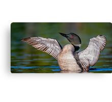 Another Impression Canvas Print