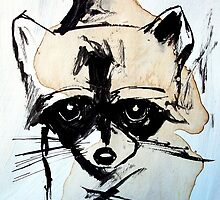 raccoon by starheadboy