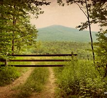 End of the Road by Monica M. Scanlan