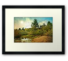 Wade into the Water Framed Print