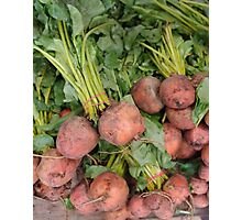 More Bunches of Beets Photographic Print