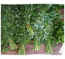 Bunches of Parsley Poster