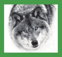 Wolf Eyes - Timber Wolf One Piece - Short Sleeve