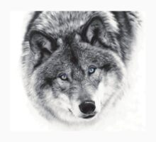 Wolf Eyes - Timber Wolf One Piece - Long Sleeve