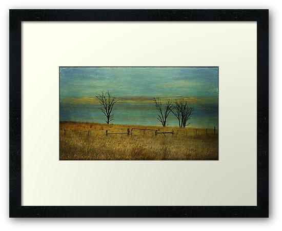 desolation II by Clare Colins