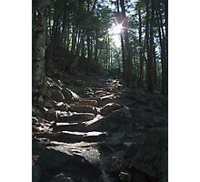 The way to King Mountain Photographic Print