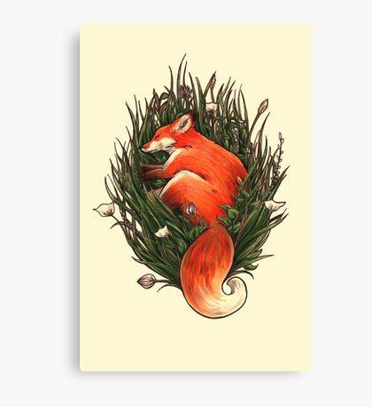 Fox in the Brush Canvas Print
