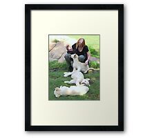 Playing - Oh Wow!!! Framed Print