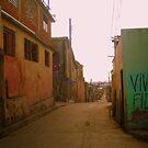 Viva Fidel by dher5