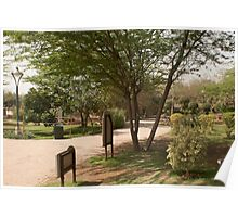 Path and trees inside the Garden of 5 Senses Poster