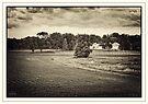Farm Livin' by KBritt