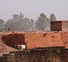 Workers at a brick kiln by ashishagarwal74
