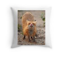 Red Fox Stretch - Algonquin Park, Canada Throw Pillow