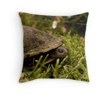 Peeking Tortoise Throw Pillow