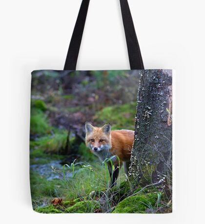 Red Fox - Algonquin Park, Canada Tote Bag