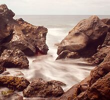 The Path of the Waves by Tamara Rogers