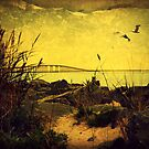 Light Over the Inlet by Lea  Weikert