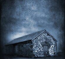 Rain by Svetlana Sewell