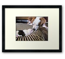 Daddy Buster and Son, Pirate-3 weeks Framed Print