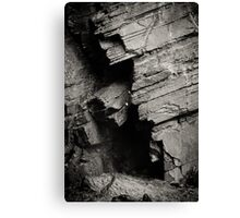 Shadows and striations Canvas Print