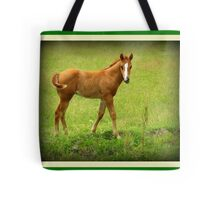The One......The Only......Me!! Tote Bag