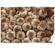 Garlic bulbs from the Isle of Wight  Poster