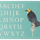 Blackbird with Alphabet by Windansea