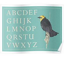 Blackbird with Alphabet Poster