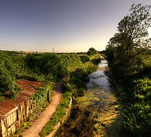 The Grand Western Canal at Ebear by Rob Hawkins