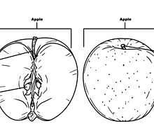 It's a apple by CoyoDesign