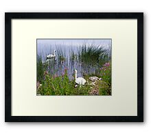 Guarding The Family Framed Print
