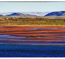 Tidal Mud Flats by David J Baster