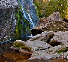 Powerscourt Waterfall, Wicklow, Ireland. by Raymond Doyle