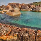 Elephants, Rocks and Lichen. William Bay NP. WA. by John Sharp