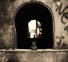 Looking Through by James Nagy