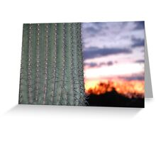 Cactus Sunet Greeting Card