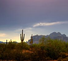 In the Shadows of the Superstitions  by Saija  Lehtonen