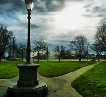 The Light of a Winter's Day by PictureNZ