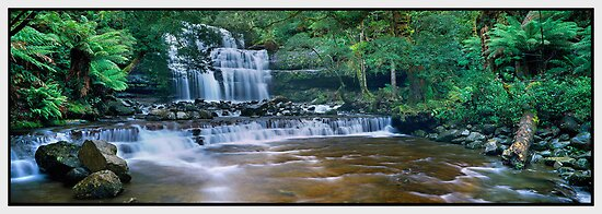 Serenity, Liffey Falls TAS by Chris Munn