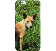 Dog in a Meadow iPhone Case/Skin