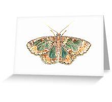Geometrid moth Greeting Card