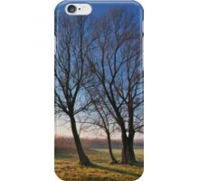 Beautiful autumn landscape at sunrise with fog iPhone Case/Skin