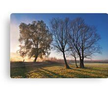 Beautiful autumn landscape at sunrise with fog Canvas Print