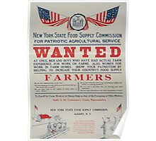 For patriotic agricultural service wanted at once men and boys who have had actual farm experience 002 Poster