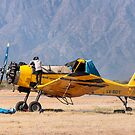 Plane in Catamarca by Gabriel Skoropada