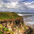 The East Cliff by Tom Gomez