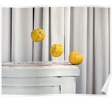 Still Moment with Bush Lemons Poster