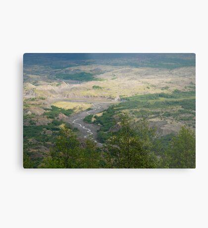Washington Landscape Metal Print