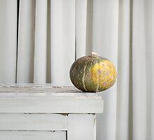 Still Moment with Jap Pumpkin by sramacher