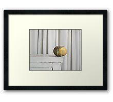 Still Moment with Jap Pumpkin Framed Print